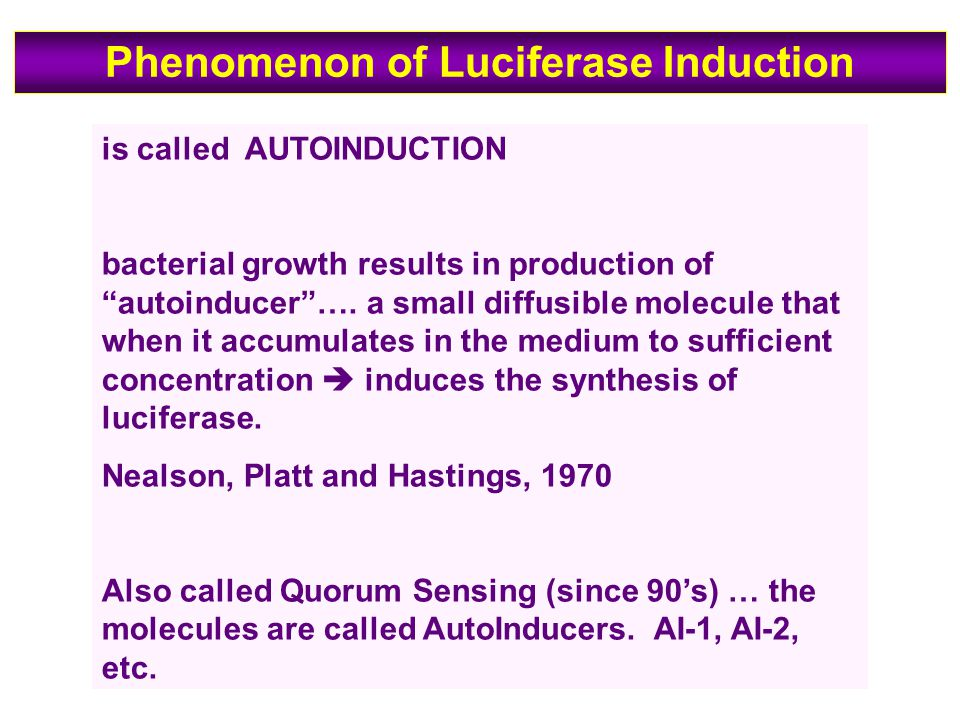 is called AUTOINDUCTION bacterial growth results in production of autoinducer ….