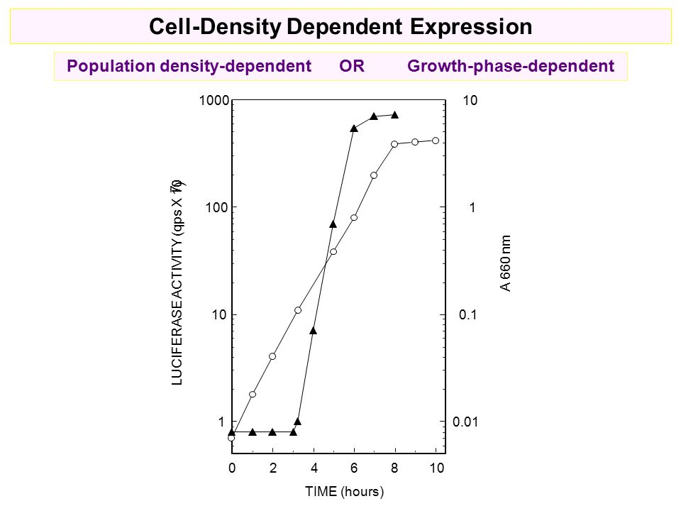 Population density-dependent ORGrowth-phase-dependent Cell-Density Dependent Expression