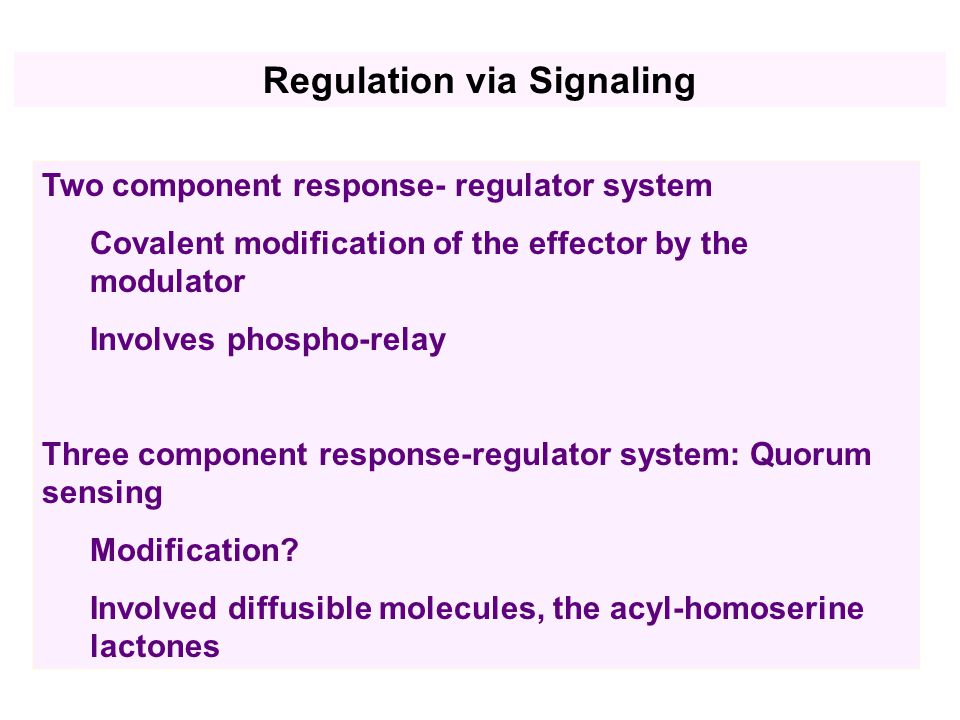 Two component response- regulator system Covalent modification of the effector by the modulator Involves phospho-relay Three component response-regulator system: Quorum sensing Modification.