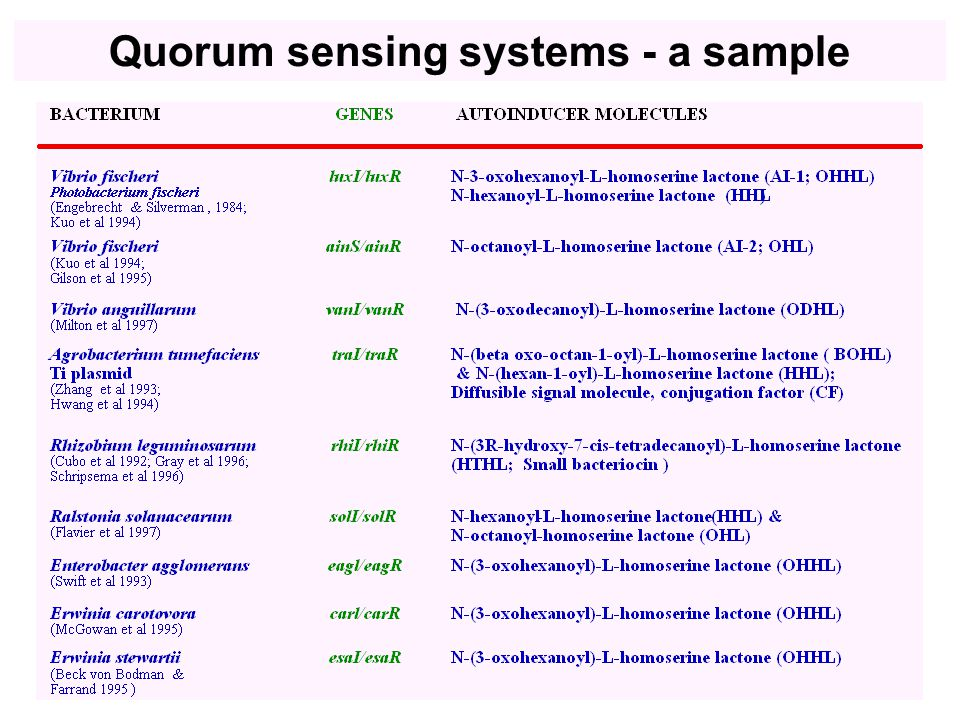 Quorum sensing systems - a sample