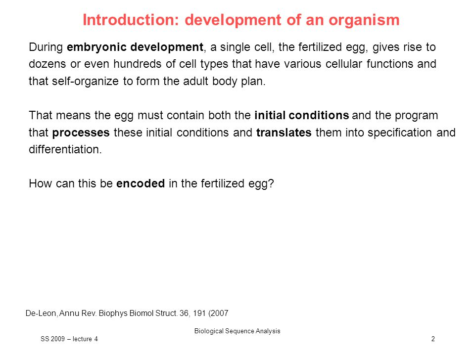 SS 2009 – lecture 4 Biological Sequence Analysis 3 What program regulates specification.