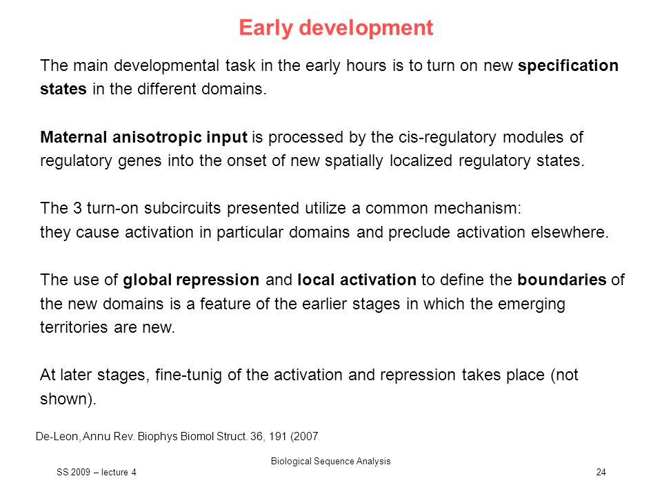SS 2009 – lecture 4 Biological Sequence Analysis 24 Early development The main developmental task in the early hours is to turn on new specification s
