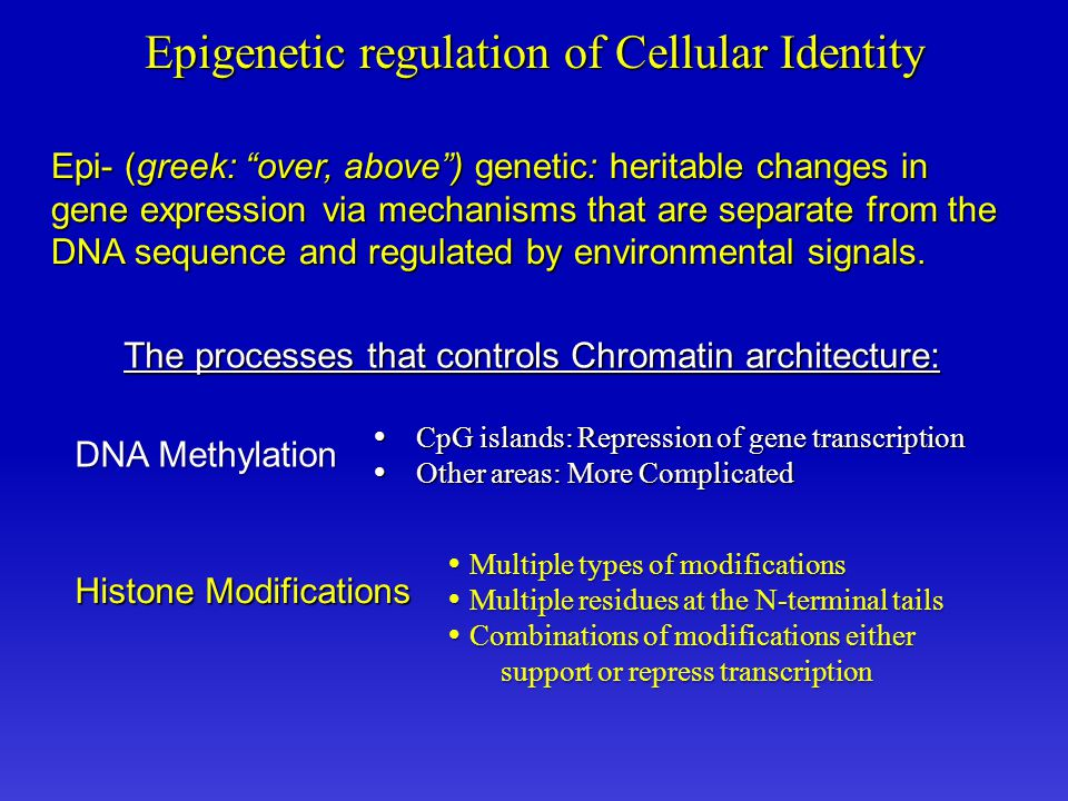 Epi- (greek: over, above ) genetic: heritable changes in gene expression via mechanisms that are separate from the DNA sequence and regulated by environmental signals.