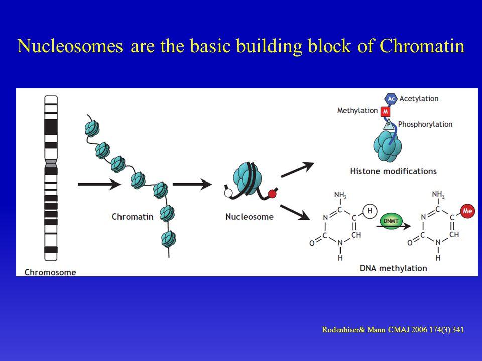 Nucleosomes are the basic building block of Chromatin Rodenhiser& Mann CMAJ 2006 174(3):341