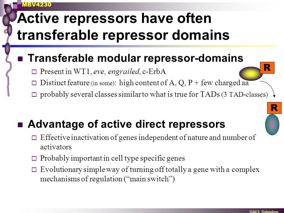 MBV4230 Odd S. Gabrielsen Active repressors have often transferable repressor domains Transferable modular repressor-domains  Present in WT1, eve, en