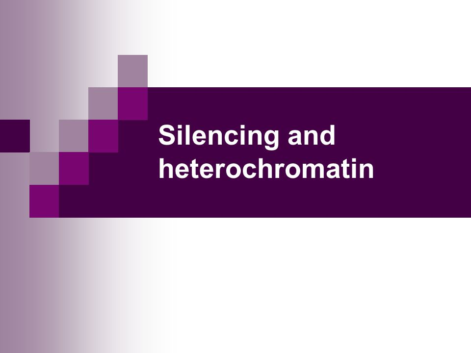 Silencing and heterochromatin