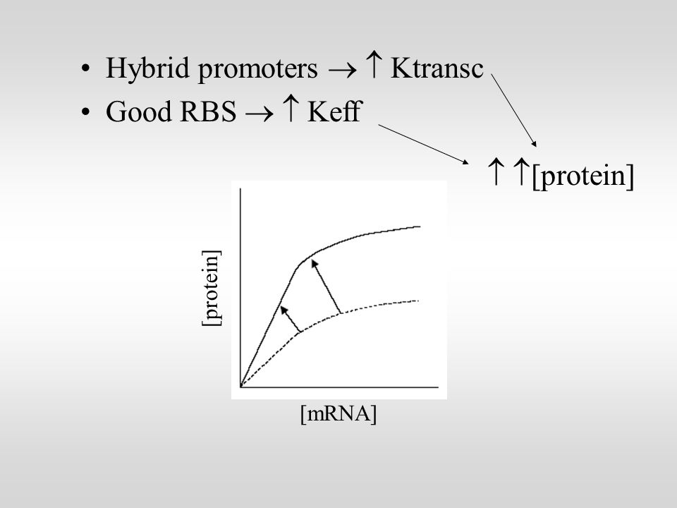 [mRNA] [protein] Hybrid promoters   Ktransc Good RBS   Keff   [protein]