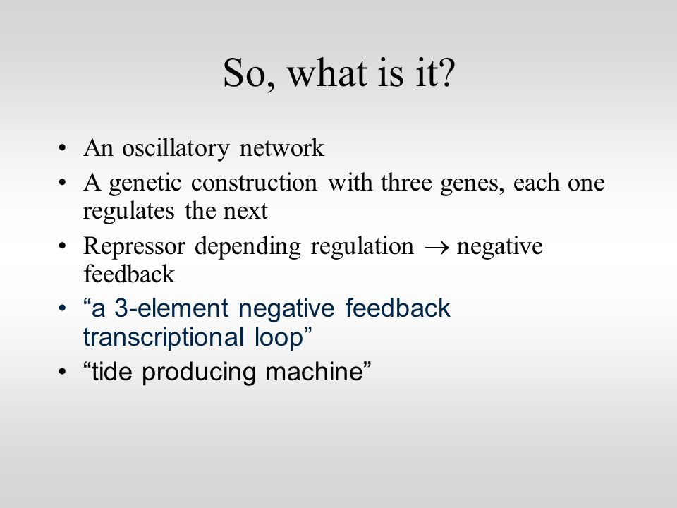 One can try with this scheme to talk about the plasmid as parts: But this is not MIT´s language!!