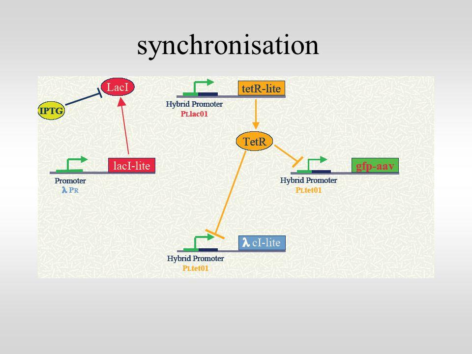 synchronisation
