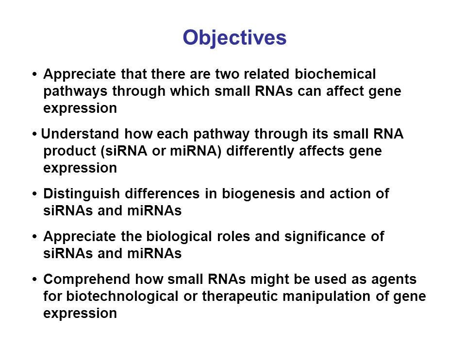 Objectives Appreciate that there are two related biochemical pathways through which small RNAs can affect gene expression Understand how each pathway