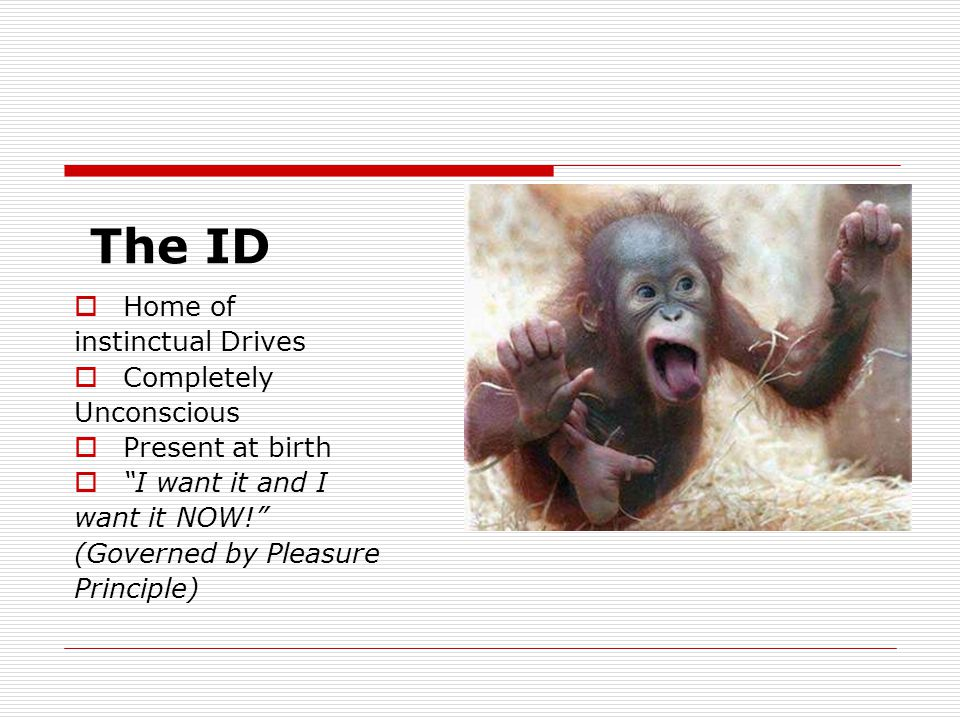 The ID  Home of instinctual Drives  Completely Unconscious  Present at birth  I want it and I want it NOW! (Governed by Pleasure Principle)