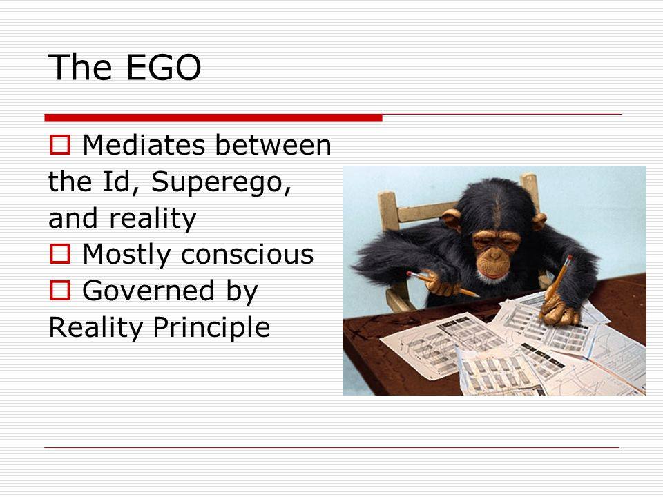 The EGO  Mediates between the Id, Superego, and reality  Mostly conscious  Governed by Reality Principle
