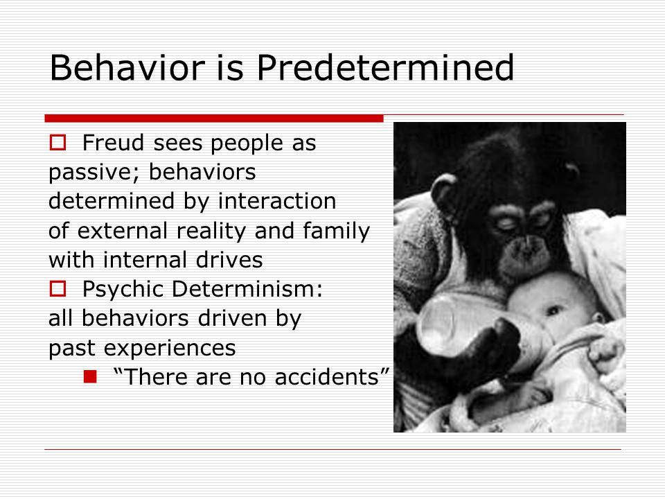 Behavior is Predetermined  Freud sees people as passive; behaviors determined by interaction of external reality and family with internal drives  Ps