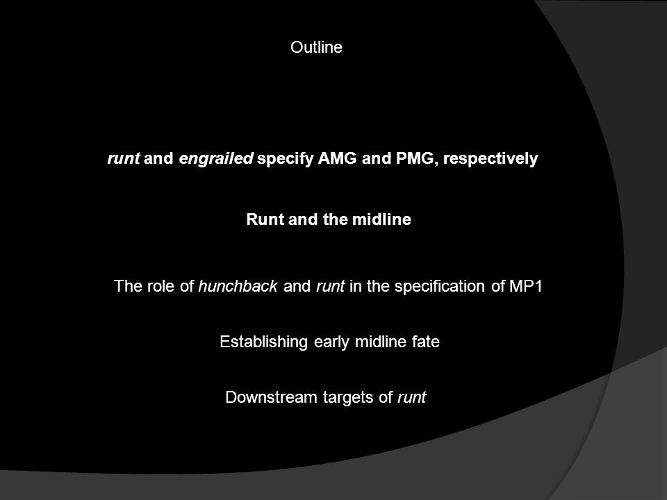 Outline runt and engrailed specify AMG and PMG, respectively The role of hunchback and runt in the specification of MP1 Establishing early midline fate Runt and the midline Downstream targets of runt