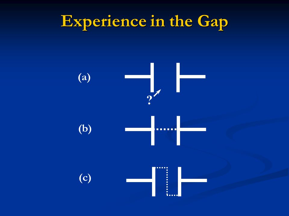 Experience in the Gap (a) (b) (c)