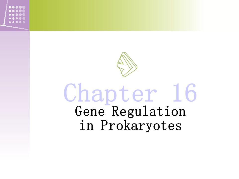 Figure 16-21 transcription at the tr p attenuator