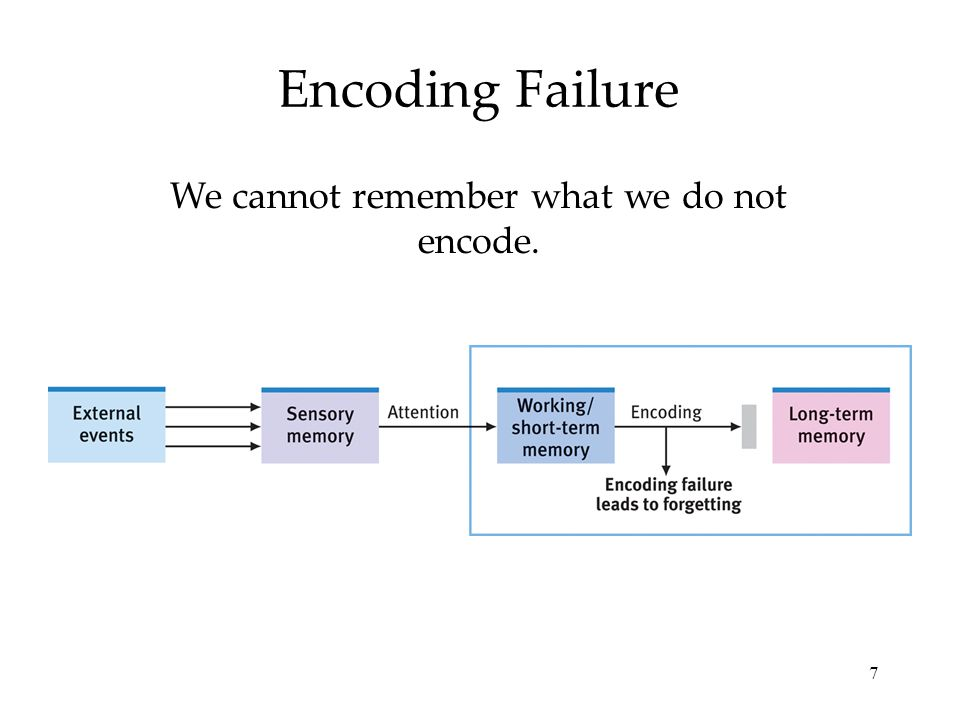 7 Encoding Failure We cannot remember what we do not encode.