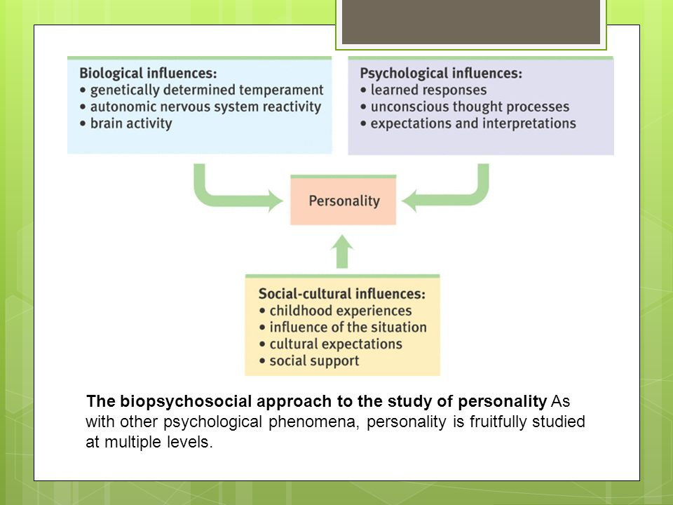 The biopsychosocial approach to the study of personality As with other psychological phenomena, personality is fruitfully studied at multiple levels.