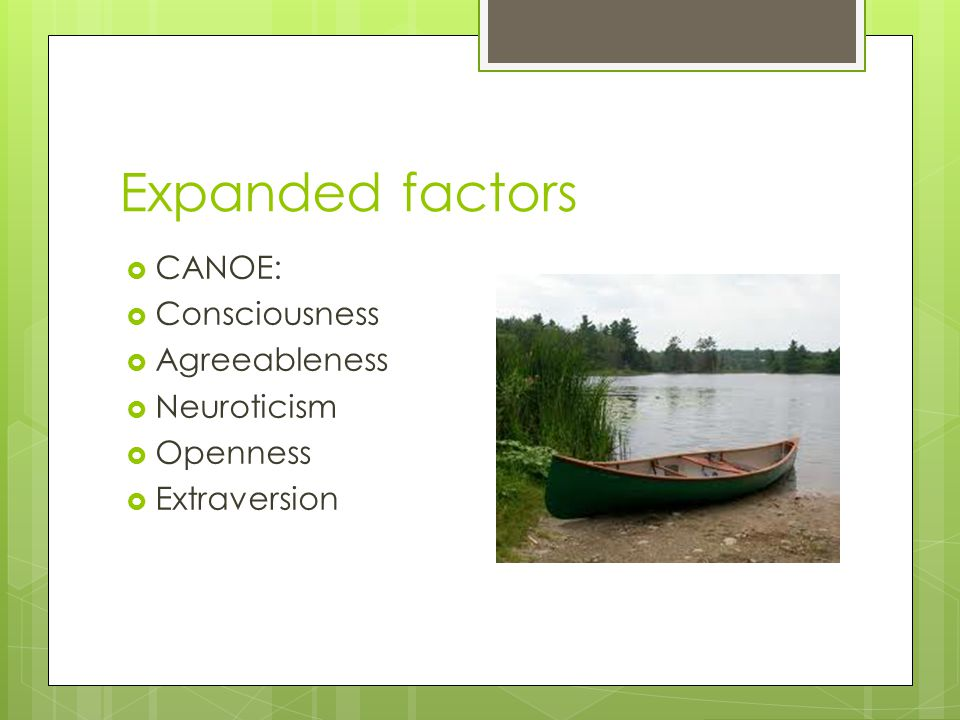 Expanded factors  CANOE:  Consciousness  Agreeableness  Neuroticism  Openness  Extraversion