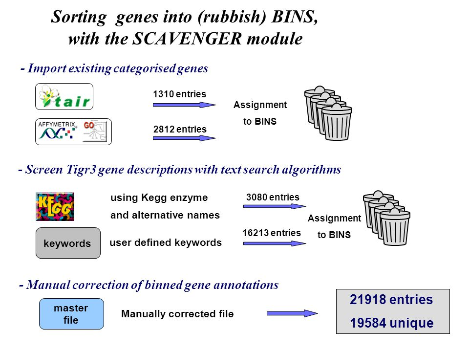 - Import existing categorised genes 1310 entries 2812 entries Assignment to BINS - Screen Tigr3 gene descriptions with text search algorithms using Kegg enzyme and alternative names keywords user defined keywords 3080 entries 16213 entries Assignment to BINS - Manual correction of binned gene annotations master file Manually corrected file 21918 entries 19584 unique Sorting genes into (rubbish) BINS, with the SCAVENGER module