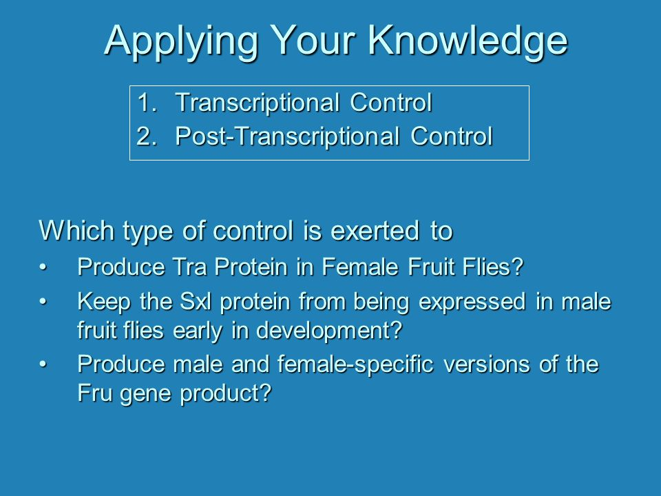 Applying Your Knowledge Which type of control is exerted to Produce Tra Protein in Female Fruit Flies?Produce Tra Protein in Female Fruit Flies? Keep