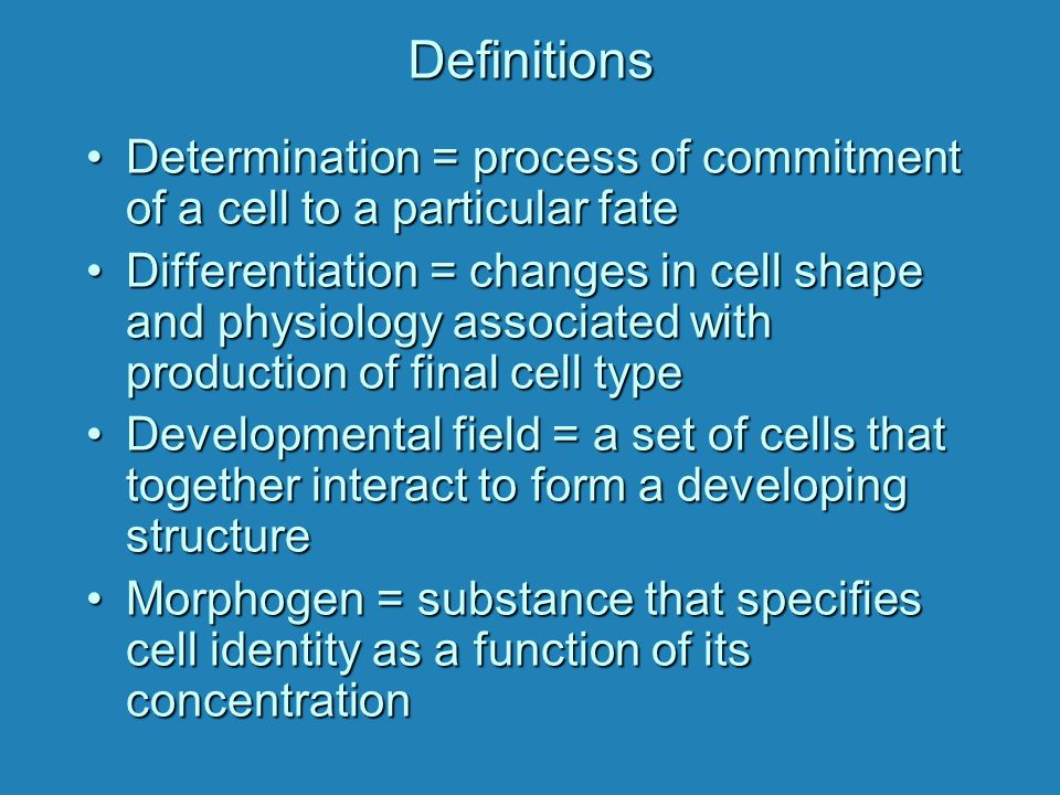 Definitions Determination = process of commitment of a cell to a particular fateDetermination = process of commitment of a cell to a particular fate D