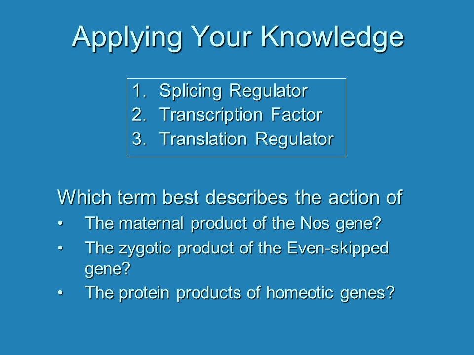 Applying Your Knowledge Which term best describes the action of The maternal product of the Nos gene?The maternal product of the Nos gene? The zygotic