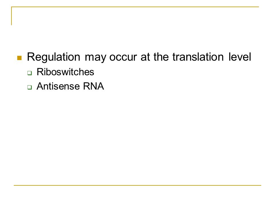 Regulation may occur at the translation level  Riboswitches  Antisense RNA