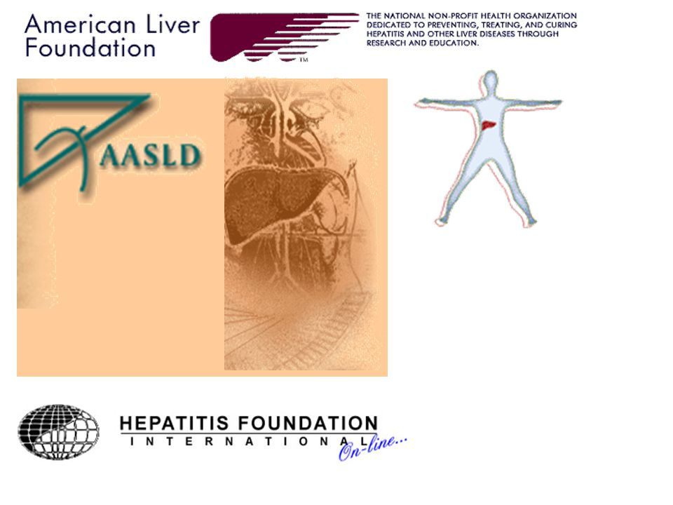Hepatoma Cells in Tissue Culture