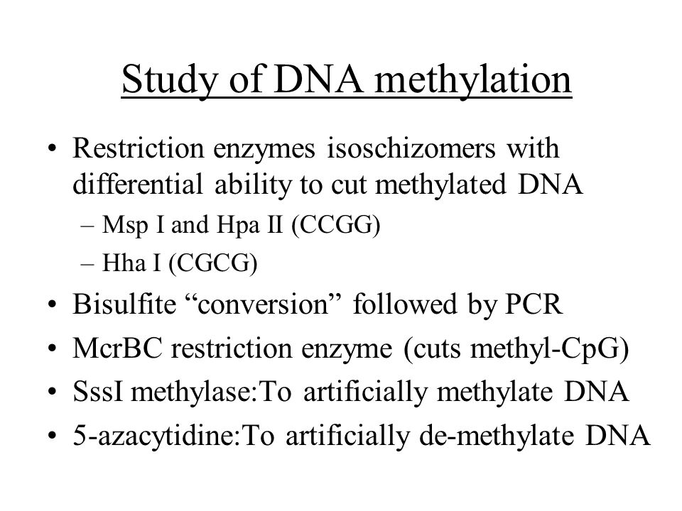 Study of DNA methylation Restriction enzymes isoschizomers with differential ability to cut methylated DNA –Msp I and Hpa II (CCGG) –Hha I (CGCG) Bisulfite conversion followed by PCR McrBC restriction enzyme (cuts methyl-CpG) SssI methylase:To artificially methylate DNA 5-azacytidine:To artificially de-methylate DNA