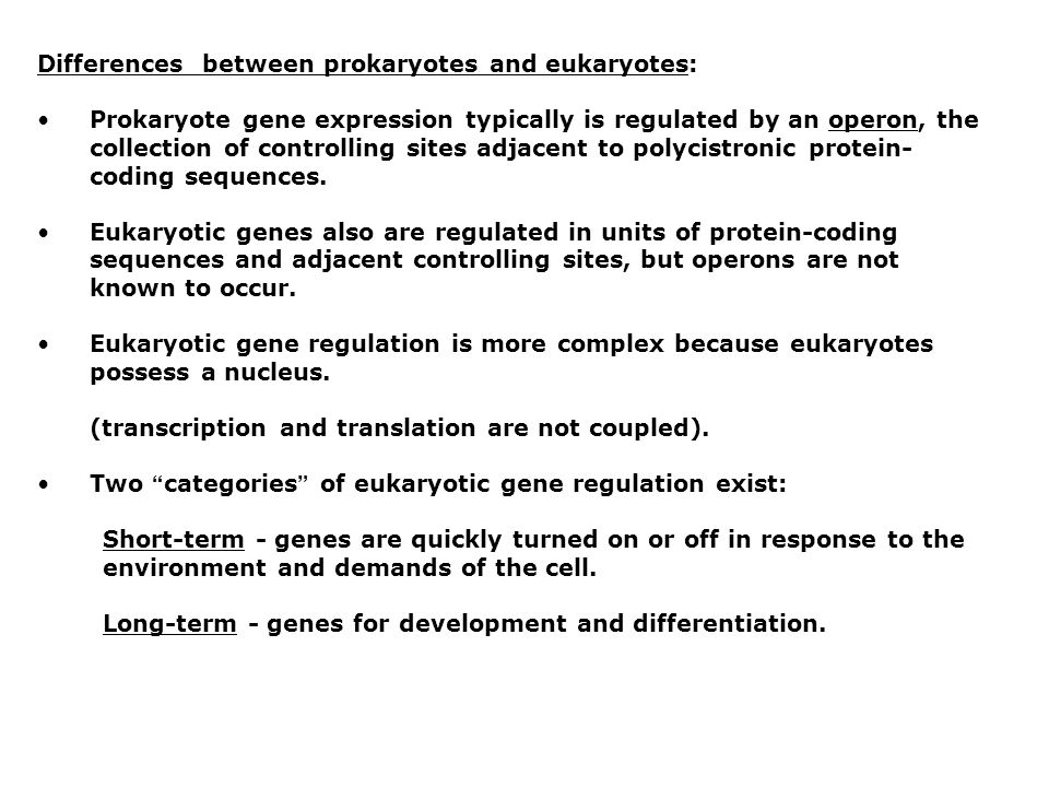 Eukaryote gene expression is regulated at six levels: 1.Transcription 2.RNA processing 3.mRNA transport 4.mRNA translation 5.mRNA degradation 6.Protein degradation Fig.