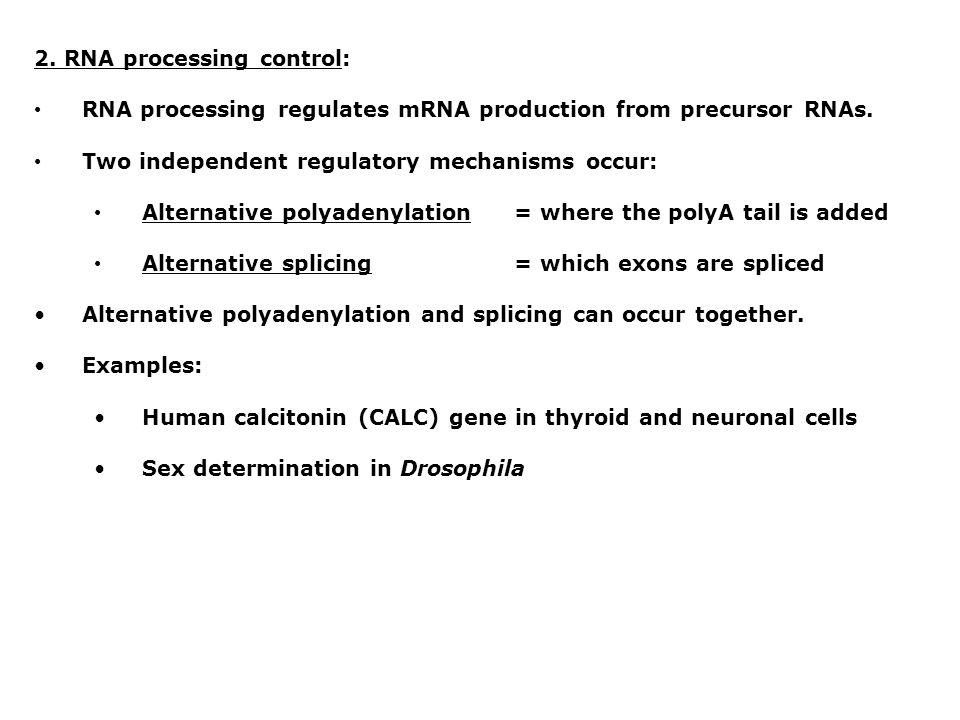 2. RNA processing control: RNA processing regulates mRNA production from precursor RNAs. Two independent regulatory mechanisms occur: Alternative poly