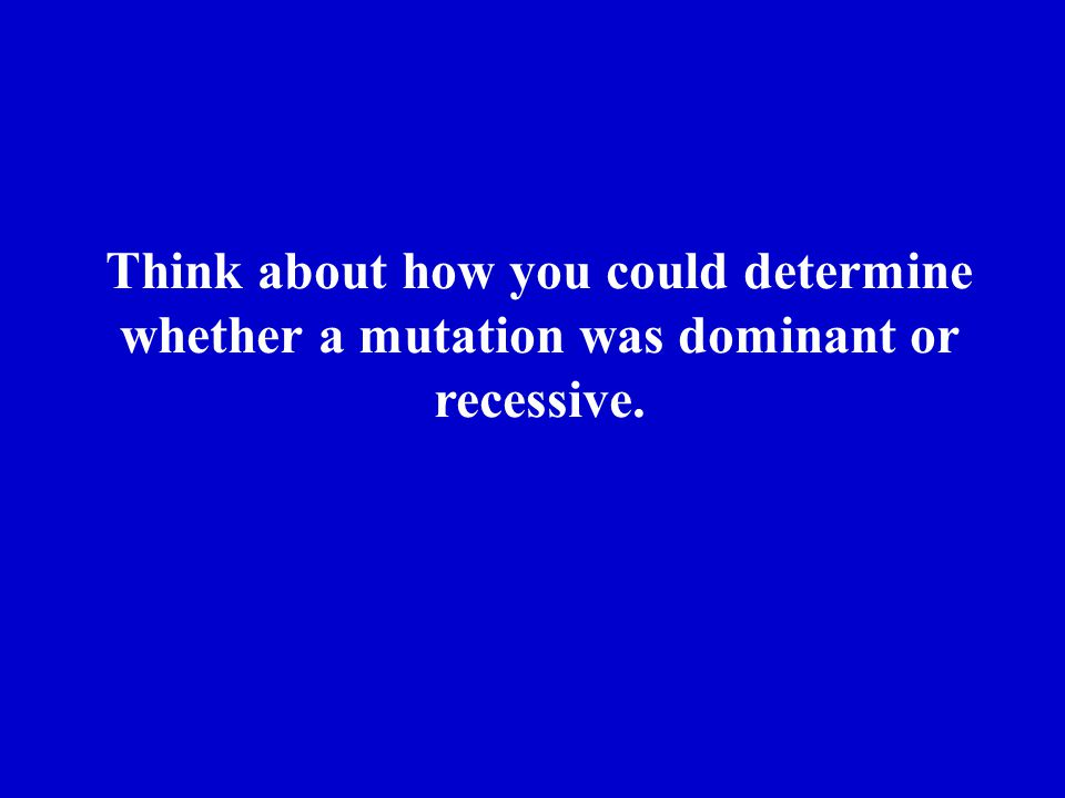 Think about how you could determine whether a mutation was dominant or recessive.