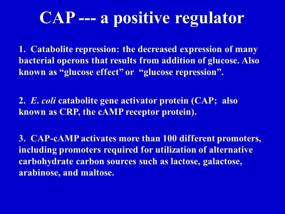 CAP --- a positive regulator 1. Catabolite repression: the decreased expression of many bacterial operons that results from addition of glucose. Also