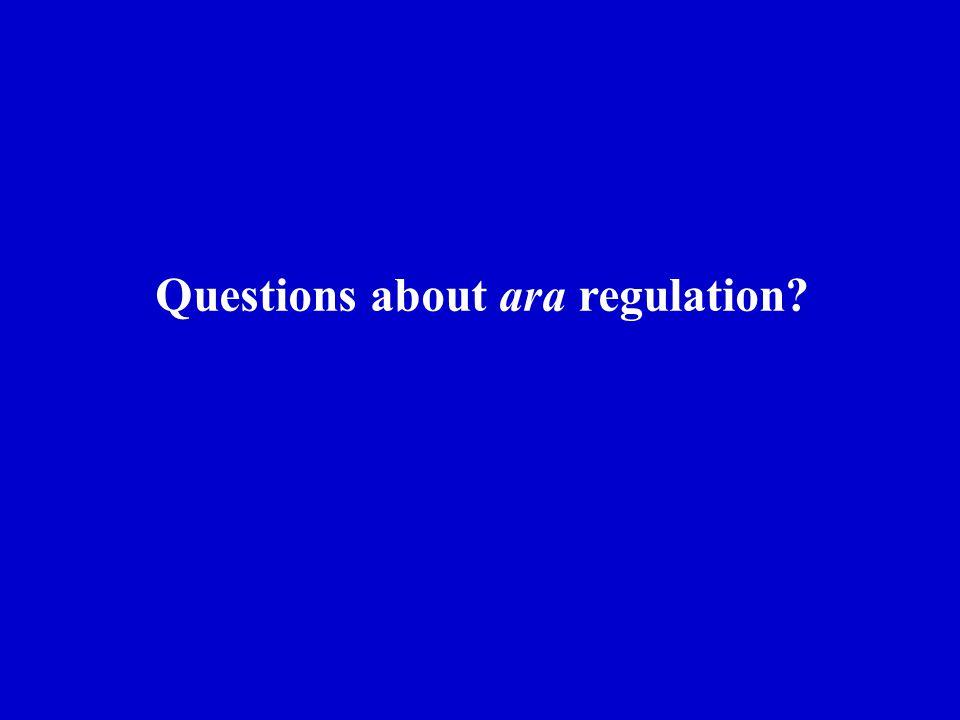 Questions about ara regulation?