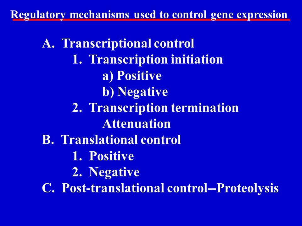 A. Transcriptional control 1. Transcription initiation a) Positive b) Negative 2. Transcription termination Attenuation B. Translational control 1. Po
