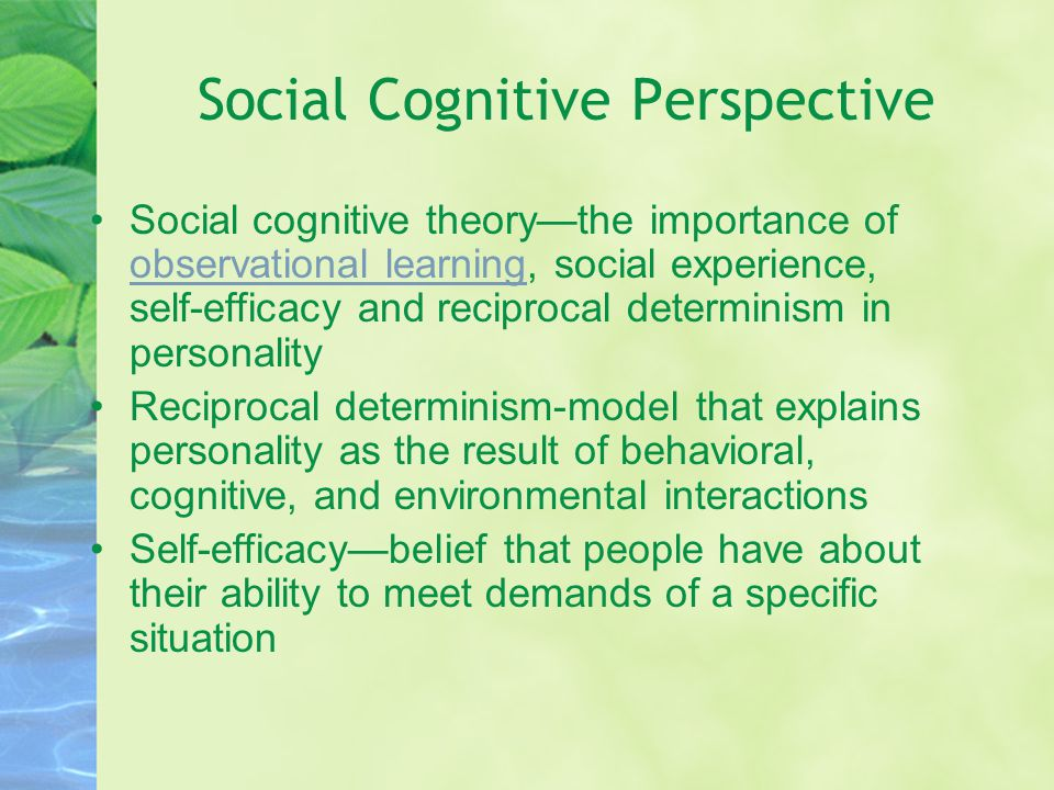 Social Cognitive Perspective Social cognitive theory—the importance of observational learning, social experience, self-efficacy and reciprocal determi