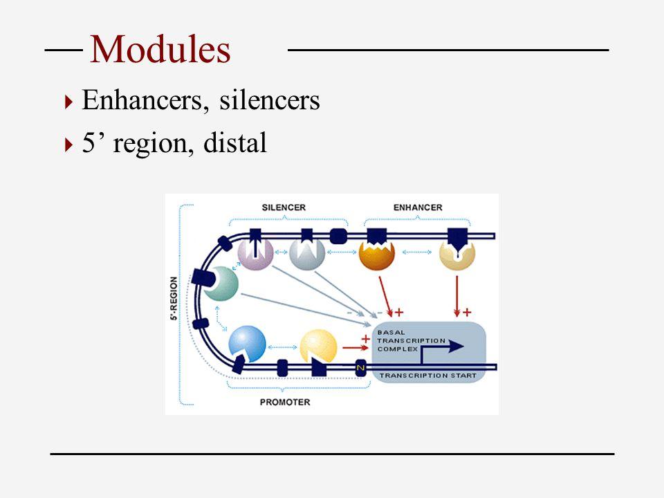 Modules  Enhancers, silencers  5' region, distal