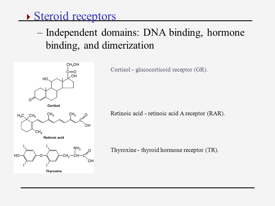  Steroid receptors –Independent domains: DNA binding, hormone binding, and dimerization Cortisol - glucocorticoid receptor (GR).