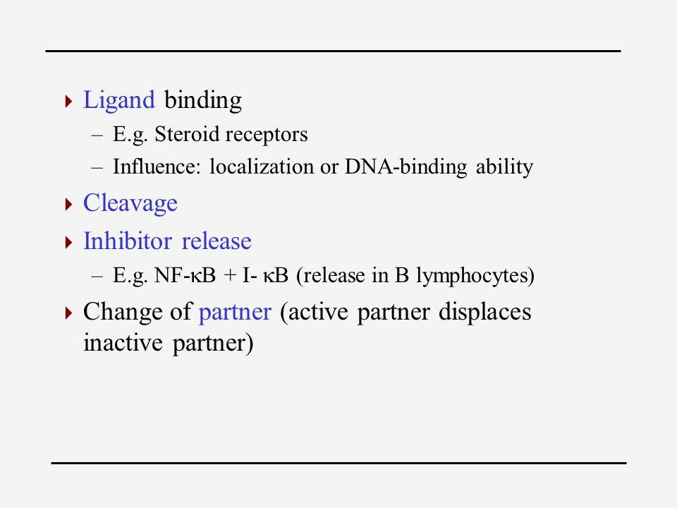  Ligand binding –E.g.