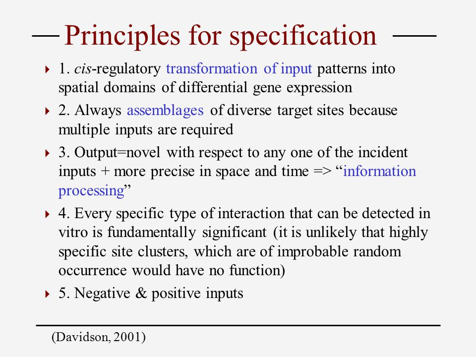 Principles for specification  1.