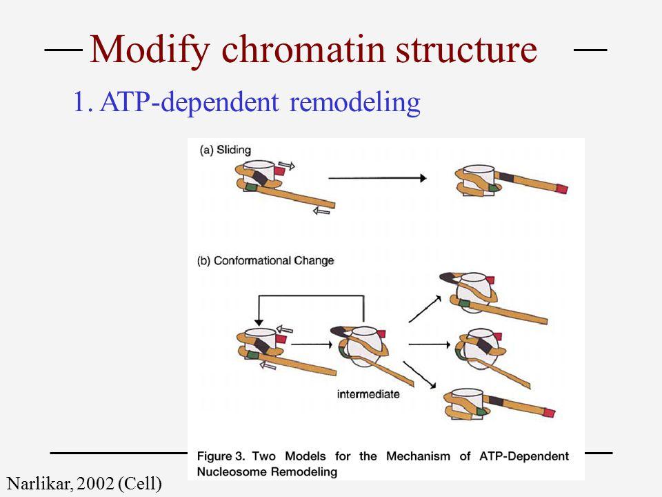 Narlikar, 2002 (Cell) 1. ATP-dependent remodeling Modify chromatin structure