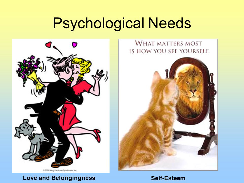 Psychological Needs Love and Belongingness Self-Esteem