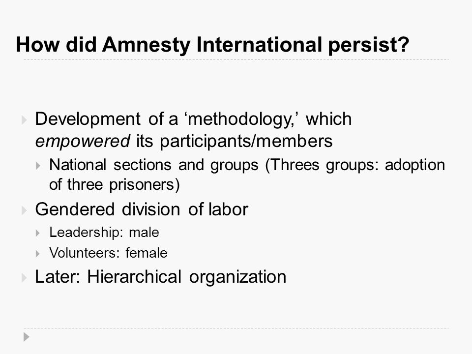 How did Amnesty International persist.