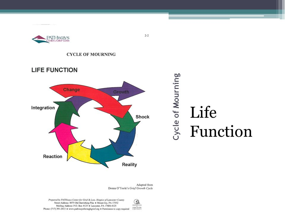 Cycle of Mourning Life Function
