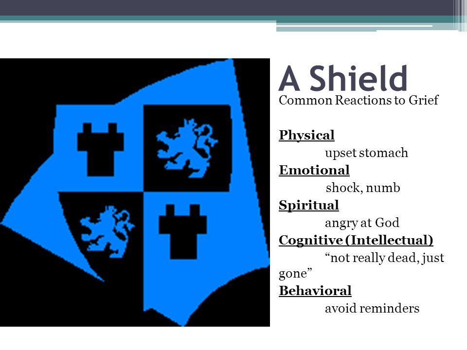 A Shield Common Reactions to Grief Physical upset stomach Emotional shock, numb Spiritual angry at God Cognitive (Intellectual) not really dead, just gone Behavioral avoid reminders