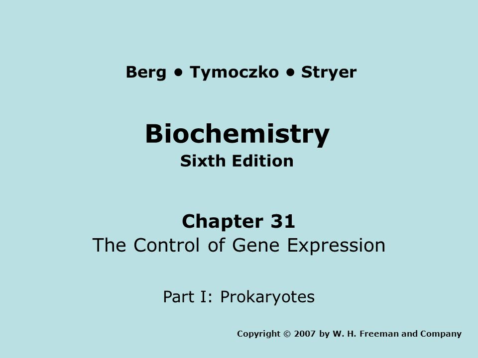 Biochemistry Sixth Edition Chapter 31 The Control of Gene Expression Part I: Prokaryotes Copyright © 2007 by W. H. Freeman and Company Berg Tymoczko S