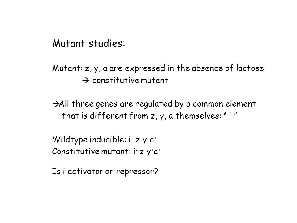 Mutant studies: Mutant: z, y, a are expressed in the absence of lactose  constitutive mutant  All three genes are regulated by a common element that