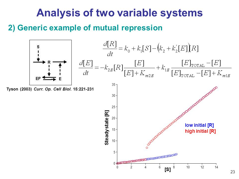 Analysis of two variable systems 2) Generic example of mutual repression Tyson (2003) Curr.
