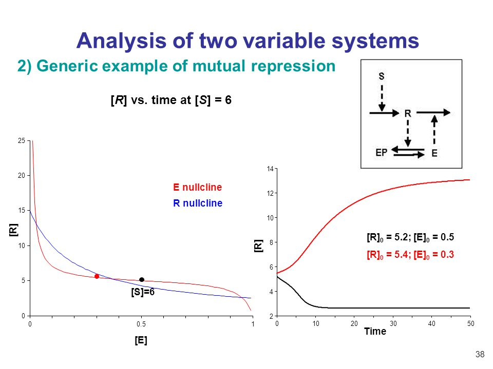 Analysis of two variable systems 00.51 0 5 10 15 20 25 [E] [R] R nullcline E nullcline [S]=6 2) Generic example of mutual repression [R] vs.